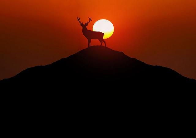 微信头像风景山水太阳