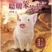 聪明笨笨猪/动物小说大王沈石溪