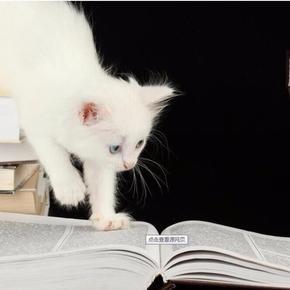 我们一起来读书-喜马拉雅fm