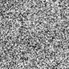 無次元(IPN 出品)