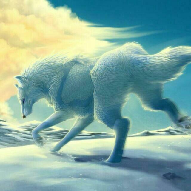 【魔幻动物系列 天狼传奇】在线收听