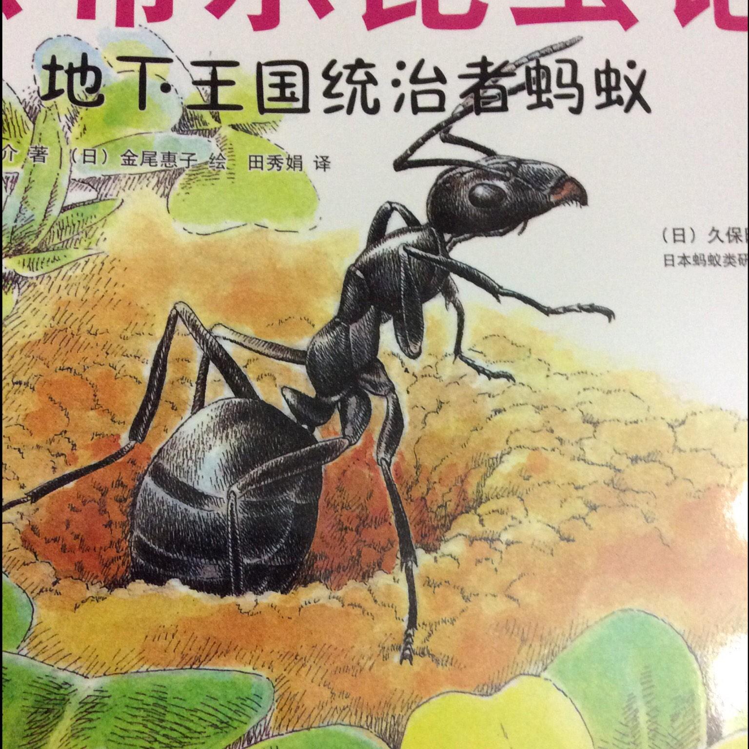 【最美的法布尔昆虫记】在线收听