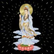 妙音1935859199-喜马拉雅fm