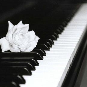 听了让人安静的钢琴曲-喜马拉雅fm