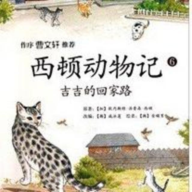 《西顿动物记》6