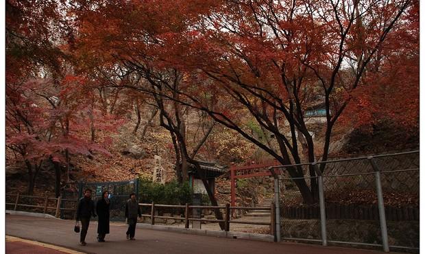 【韩国-南山公园】在线收听