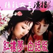 红楼梦-白话版(通俗易懂 老少皆宜)