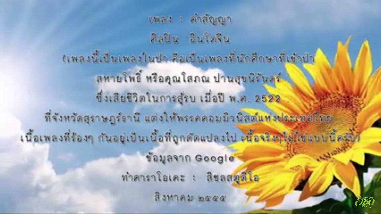 可爱泰语ppt背景
