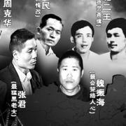《建国后中国十大刑事案件》