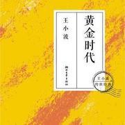 黄金时代-王小波(完结)