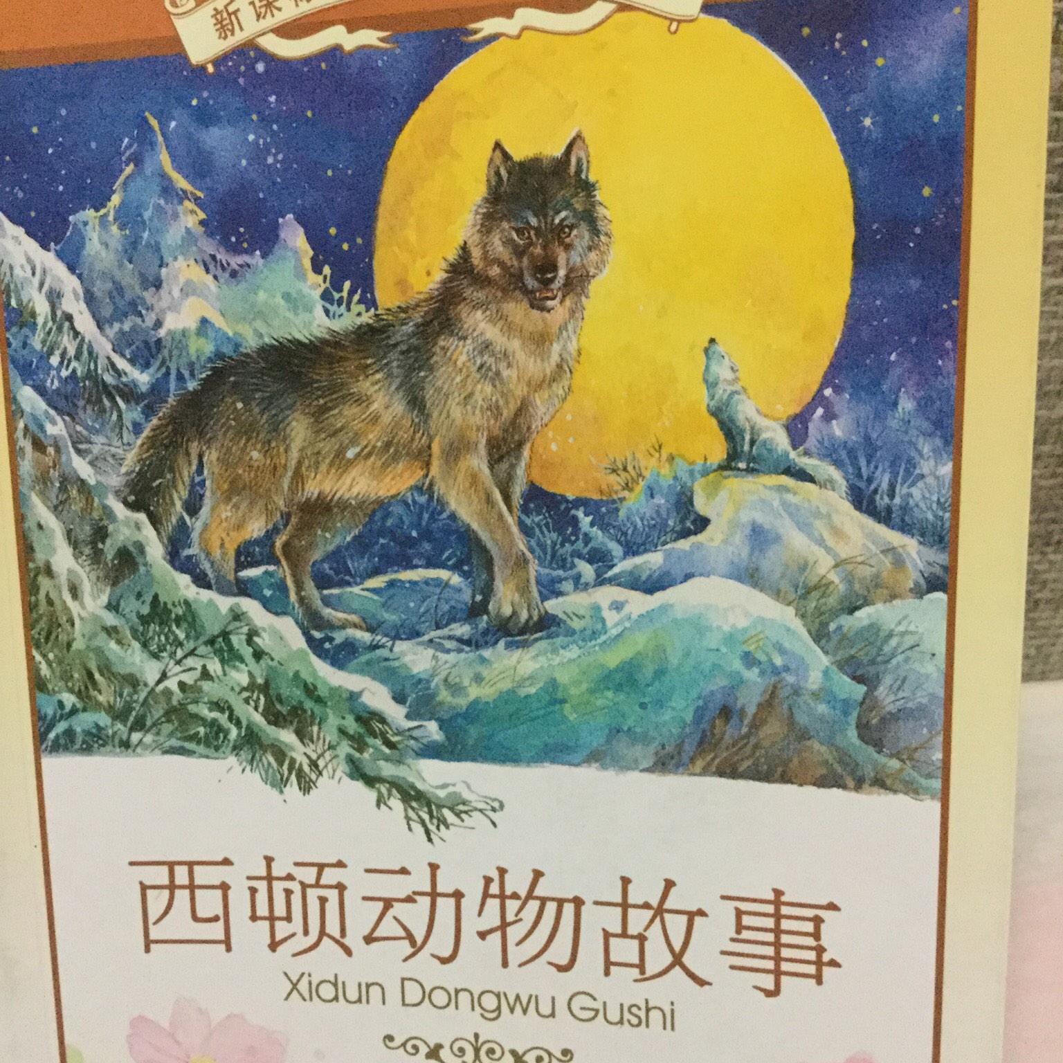 【西顿动物故事】在线收听
