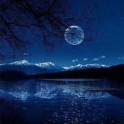 【相去万余里,各在天一涯】梦中的绿罗裙 飘向天边 转眼一切化作流年-喜马拉雅fm