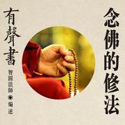 【有声书】念佛的修法03-显密佛教交流中心制作