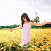 心飞翔_ic-喜马拉雅fm