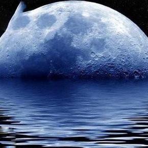 外星人就在月球背面-喜马拉雅fm