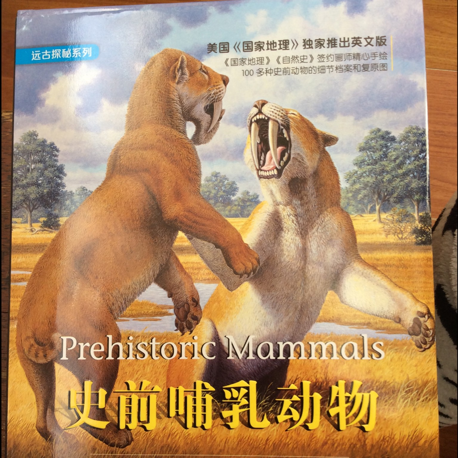 史前哺乳动物