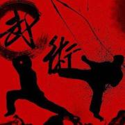 03中国功夫的新希望是培养自由搏击高手