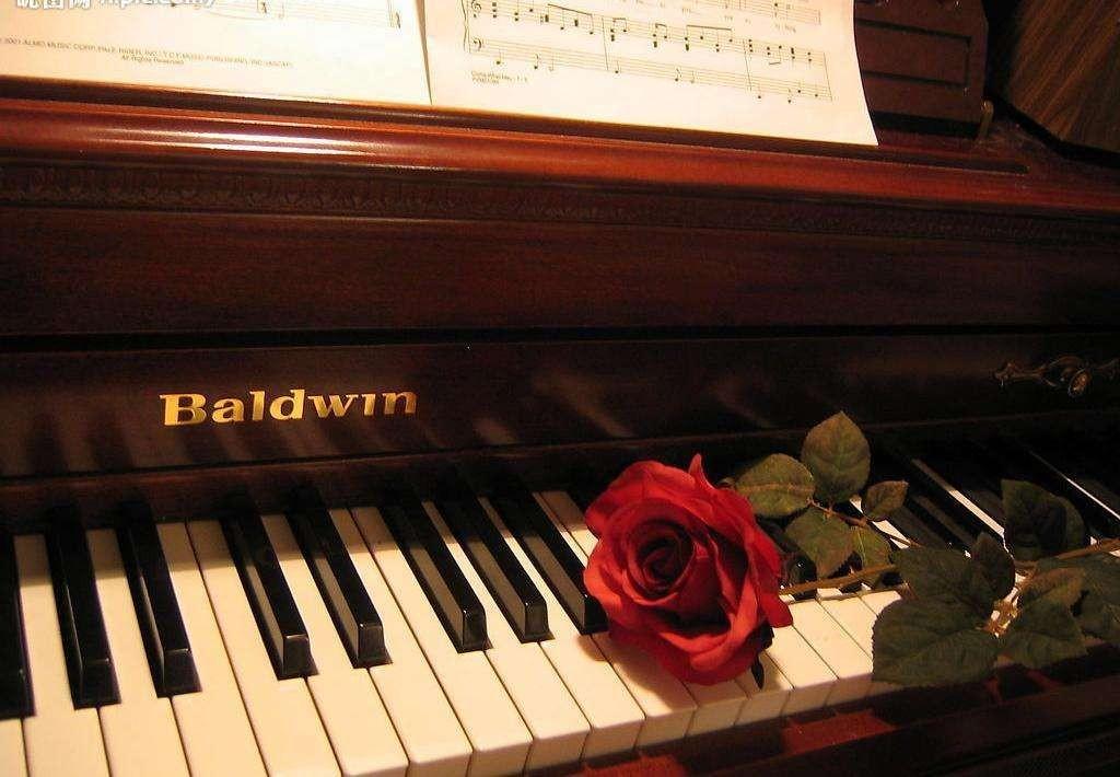 赵海洋钢琴曲