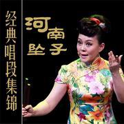 【河南坠子】经典唱段集锦