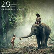 向阳花_kum-喜马拉雅fm