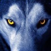 没事瞎掰-【推理】-第2期-狼性