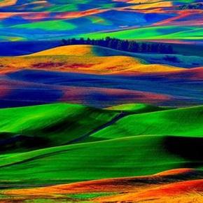自然诗意 朗诵 山林子自然智慧诗-喜马拉雅fm