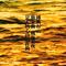 【王家卫】《东邪西毒》 NJ 黎明-喜马拉雅fm