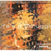 宋岳庭,《Life's A Struggle》,总有一种力量让我们泪流满面!