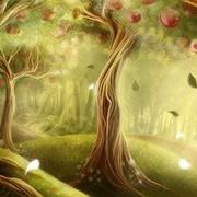 森林之馈赠(Gift Of The Forest)