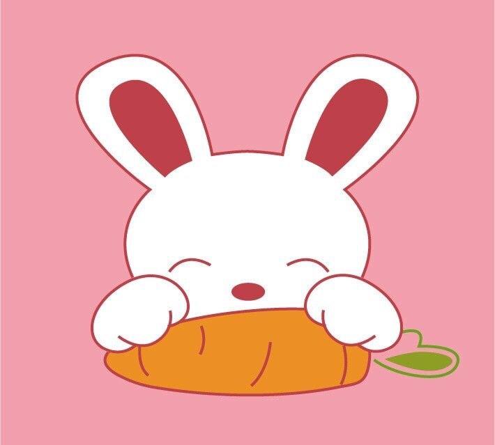 吃胡萝卜的兔子图片