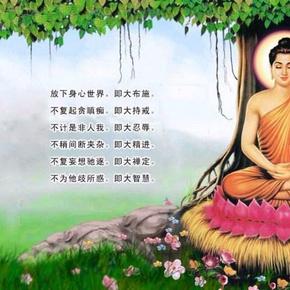 佛陀的智慧-喜马拉雅fm