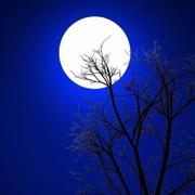 【灵异惊悚】月夜●怪谈
