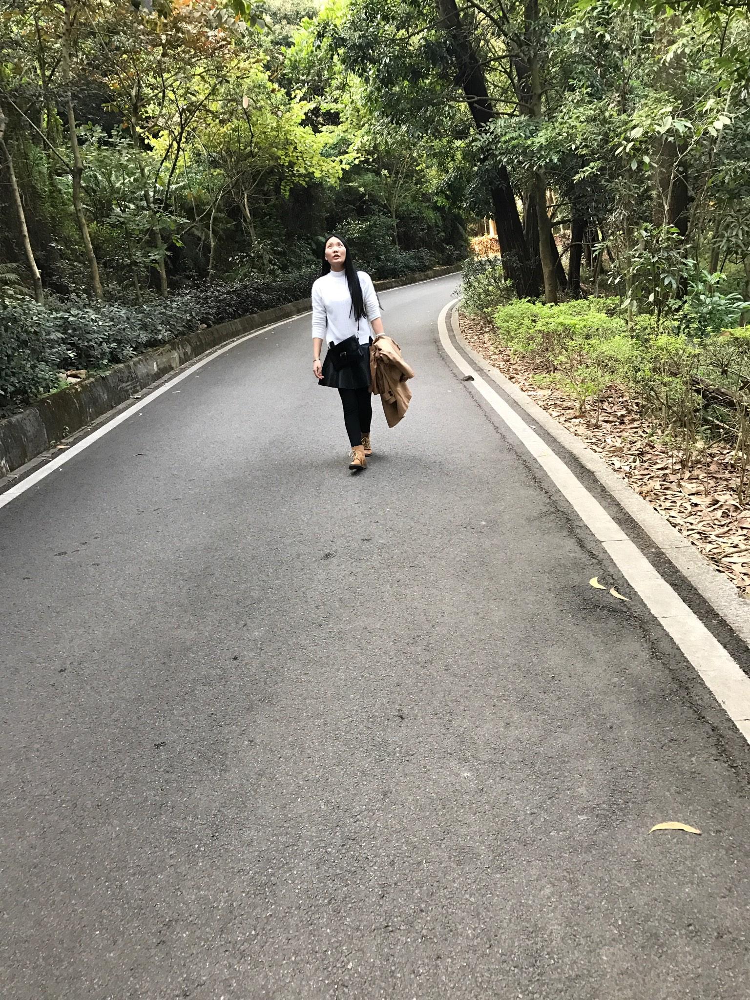 漫步人生路