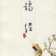 062诗经·国风·卫风·伯兮