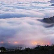阿里山的森林深呼吸