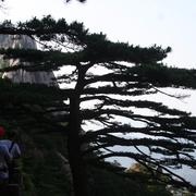 旅行的意义 作者/松尾芭蕉