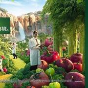 健康营养原则,微信13646221615