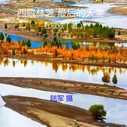 西藏林芝 最后的天堂 (下) (作者: 杜欣欣 | 播讲: 红洋)
