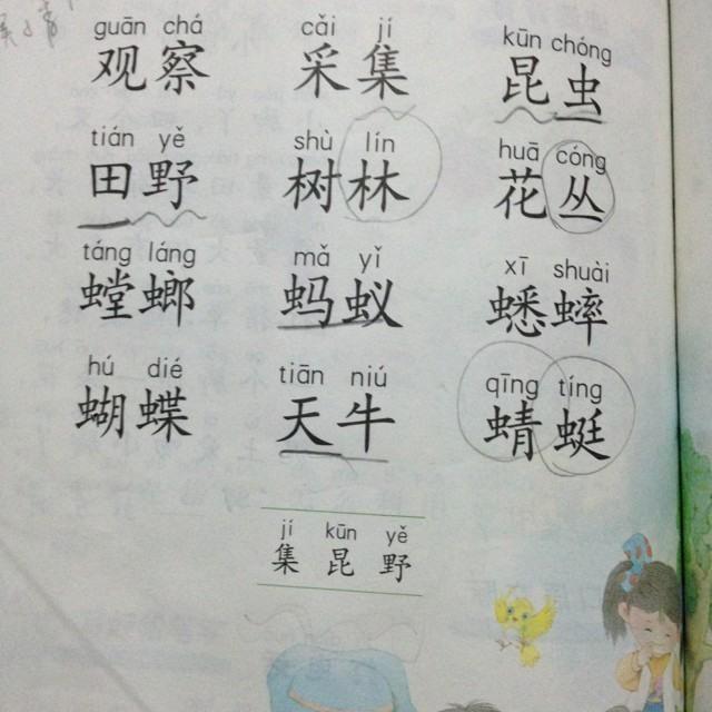 苏教小学语文一年级(第一册)