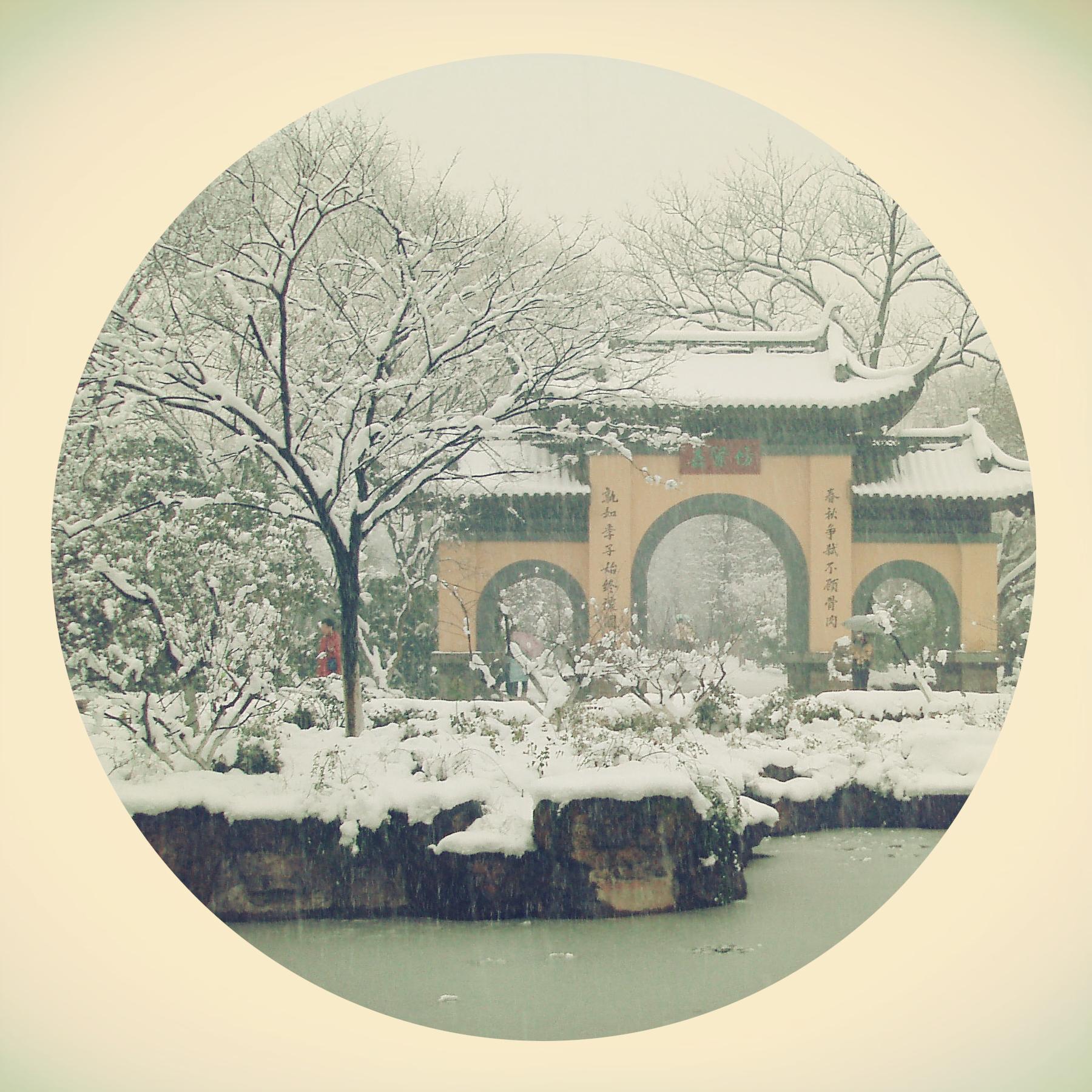 """苏州古典园林,一向被称为""""文人园林"""""""