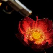 二战谍王佐尔格之死-喜马拉雅fm