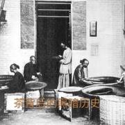 """""""茶""""背后的黑暗历史-喜马拉雅fm"""