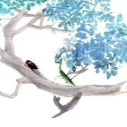 螳螂捕蝉-喜马拉雅fm