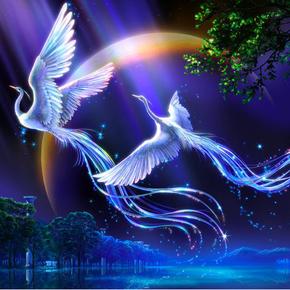 现代重生之青鸟复仇-喜马拉雅fm