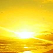 望和平(朗读)——山林子自然智慧诗-喜马拉雅fm