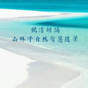 山林子自然智慧随笔-喜马拉雅fm