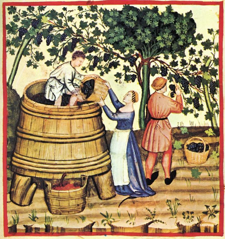 ancient wine making.jpg