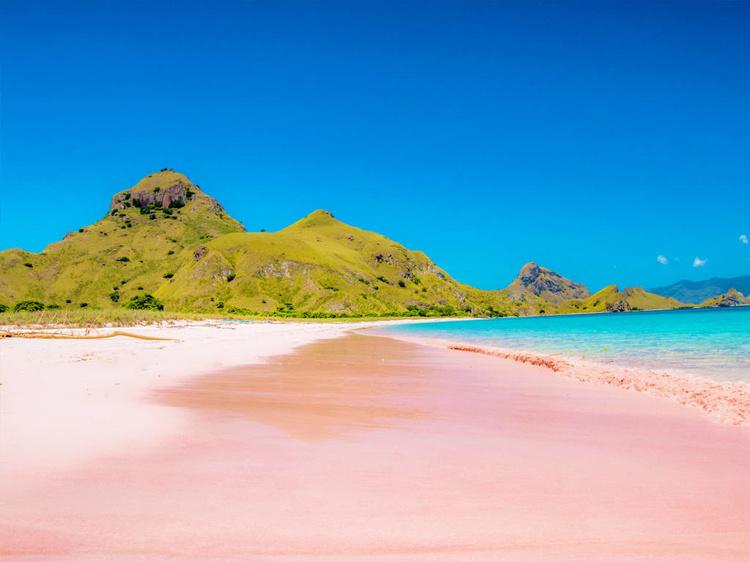 粉色沙滩.jpg