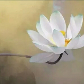 觉美 《山林子自然智慧养生学》-喜马拉雅fm
