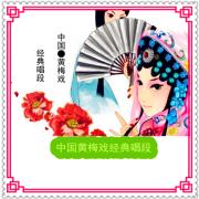 【黄梅戏】名家经典唱段合集